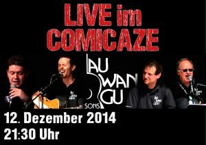Plakat-quer-comi-12-12-14